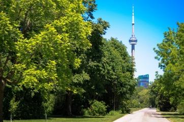 Allison in Toronto Versions (9 of 62)